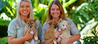 Australia Zoo Entry with Sunshine Coast Hotel Transfers Thumbnail 5