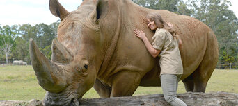 Australia Zoo Entry with Sunshine Coast Hotel Transfers Thumbnail 6