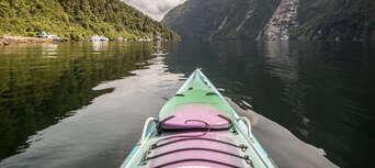 Full Day Doubtful Sound Kayak Tour Thumbnail 3