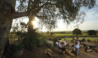 Barossa Valley Hop On Hop Off Tour Thumbnail 1