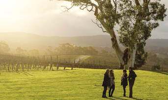 Adelaide Hills and Hahndorf Hop On Hop Off Tour with Transfers from Adelaide City Thumbnail 4
