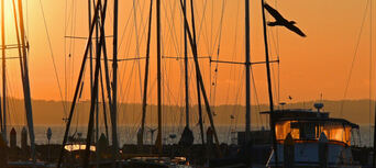 Hervey Bay Sunset Cultural Cruise with Champagne and Canapes Thumbnail 2