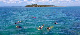 Round Island Half Day Tour Thumbnail 5
