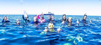 Whale Shark Swim and Catamaran Cruise Thumbnail 2