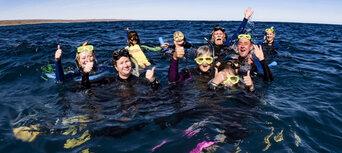 Whale Shark Swim and Catamaran Cruise Thumbnail 6