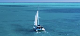 Humpback Whale Swim & Catamaran Cruise Thumbnail 6