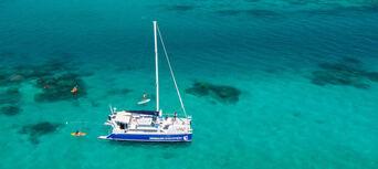 Humpback Whale Swim & Catamaran Cruise Thumbnail 3