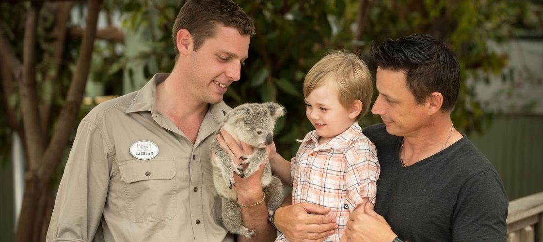 Paradise Country Koala Breakfast
