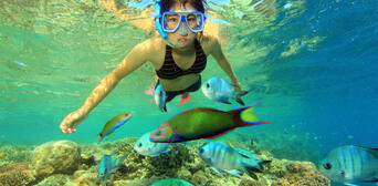 Great Barrier Reef Cruise to Hardy Reef Pontoon Thumbnail 2