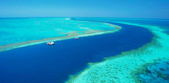 Great Barrier Reef Cruise to Hardy Reef Pontoon Thumbnail 5