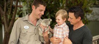 Paradise Country Koala Breakfast Thumbnail 1