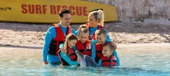 Sea World Dolphin Deep Water Adventure Thumbnail 5