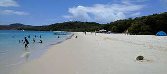 Whitsunday Islands and Whitehaven Beach Half Day Morning Departure Thumbnail 2