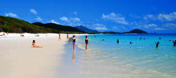 Whitsunday Islands and Whitehaven Beach Half Day Morning Departure Thumbnail 5