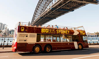 Big Bus Sydney and Bondi Hop-on Hop-off Tour Thumbnail 1