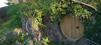 Auckland to Hobbiton Day Tour with Lunch Thumbnail 2