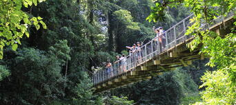 Rainforest And Waterfall Experience Thumbnail 2
