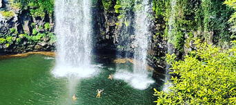 Rainforest And Waterfall Experience Thumbnail 6
