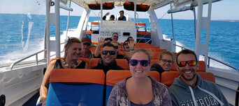 Hervey Bay 3 Hour Whale Watching Cruise Thumbnail 2