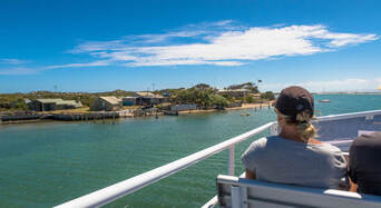 Coorong Full Day Cruise including Lunch Thumbnail 2