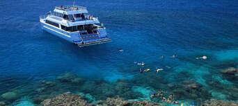 Low Isles Morning Cruise Thumbnail 2