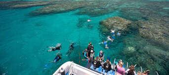 Low Isles Morning Cruise Thumbnail 5