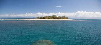 Low Isles Morning Cruise Thumbnail 6