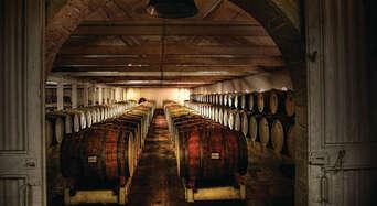 Seppeltsfield Winery Centennial Cellar Tour including Premium Wine Tastings Thumbnail 1