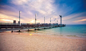 Tangalooma Marine Discovery Cruise with Dolphin Viewing & Transfers from Gold Coast Thumbnail 1