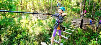 Gold Coast Hinterland Junior TreeTop Challenge Thumbnail 3