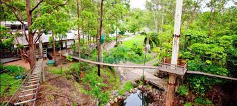 Gold Coast Hinterland Junior TreeTop Challenge Thumbnail 4