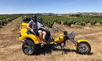 Barossa Valley Trike and Wine Tour Thumbnail 1