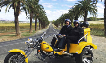 Barossa Valley Trike and Wine Tour Thumbnail 3