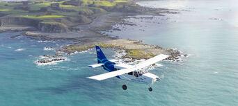 30 Minute Kaikoura Whale Watch Seaplane Flight Thumbnail 1