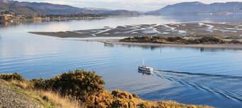Otago Peninsula Wildlife Cruise Thumbnail 4