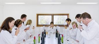 Wine Blending Experience at Penfolds Barossa Valley Thumbnail 4