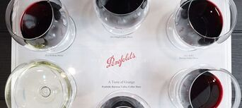 Wine Blending Experience at Penfolds Barossa Valley Thumbnail 5
