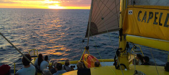 Carnac Island Half Day Sail Cruise from Fremantle Thumbnail 3