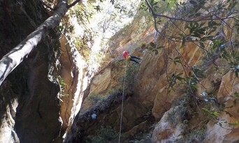 Blue Mountains Abseiling And Canyoning Thumbnail 1
