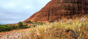 Uluru Sunset Tour With BBQ Thumbnail 3