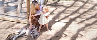 Currumbin Wildlife Sanctuary Tickets Thumbnail 4