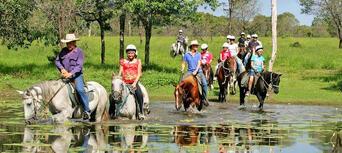 Cairns Horse Riding Tour Thumbnail 2