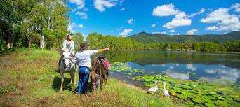 Cairns Horse Riding Tour Thumbnail 4