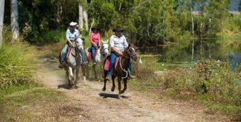 Cairns Horse Riding Tour Thumbnail 1