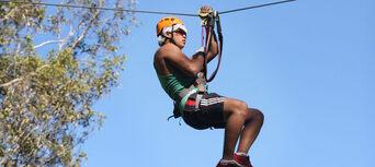 Coffs Harbour Treetop Adventure Park Thumbnail 4