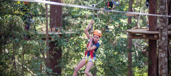 Coffs Harbour Treetop Adventure Park Thumbnail 5
