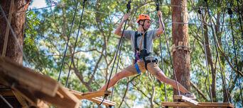 Coffs Harbour Treetop Adventure Park Thumbnail 6
