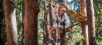 Coffs Harbour Treetop Adventure Park Thumbnail 1