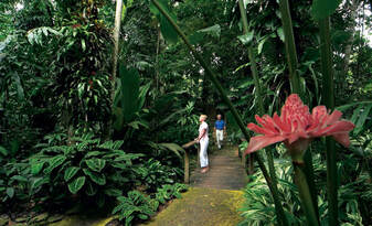 Cairns City Sights Afternoon Tour Thumbnail 6