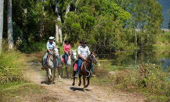 Cairns Full Day Horse Ride and ATV Quad Bike Tour Thumbnail 4